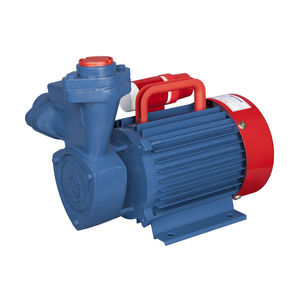 CROMPTON WATER PUMPS - MINI STAR I (1 HP)