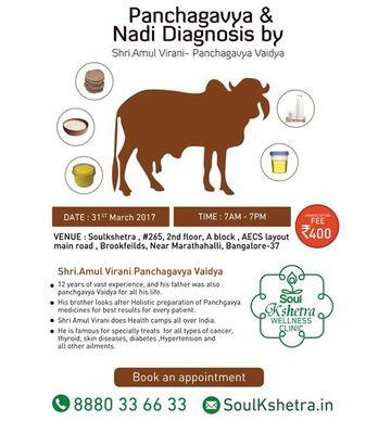 Panchagavya & Nadi Diagnosis