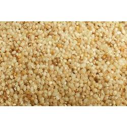 Little Millet, 1 kg