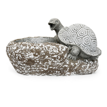 Turtle 42 cm x 23 cm x 23 cm Water Fountain - @home by Nilkamal, Grey