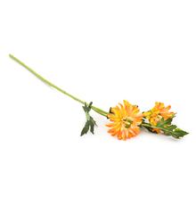 Gerbera 55 cm Flower Stick - @home by Nilkamal, Yellow