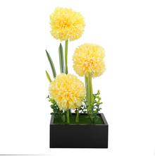 Yellow Ball Flower Potted Plant in Black Bowl - @home by Nilkamal