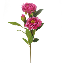 Peony Flower Stick - @home by Nilkamal, Purple