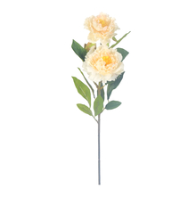 Peony Flower Stick - @home by Nilkamal, Cream