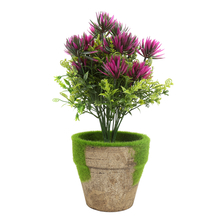 Potted Plant with Lavender Flowers, Green