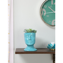 Head 14X12X17CM Potted Plant, SeaGreen