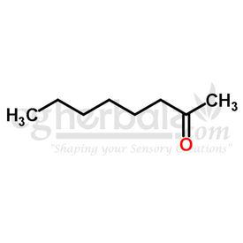 Methyl Hexyl Ketone, 10g