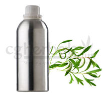 Taragon Oil, 50g
