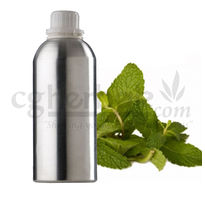 Mentha Piperita Oil, 100g