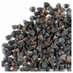 Buckwheat Grain (Unhulled) 500G
