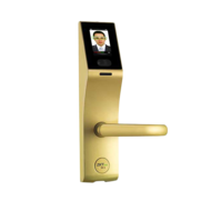 Smart Lock with Face recognition smart card password FL1000, Right Hand,  Gold