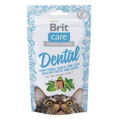 Brit Care Dental (50gms)
